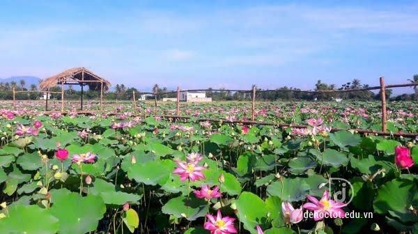 Phân tích bài thơ cảnh ngày hè - Nguyễn Trãi