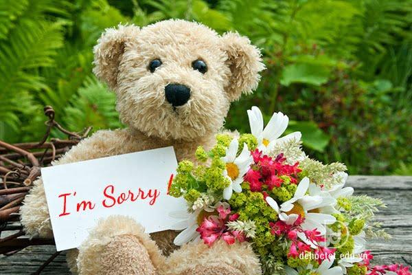 Gửi hoa xin lỗi